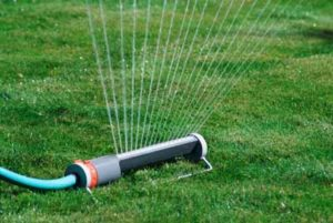 7 Things To Know About Watering Your Lawn