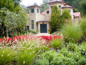 Landscape Design, Patio