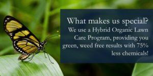 Safe Lawn Care Program