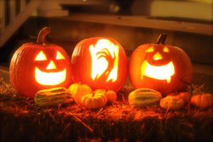 Best Places To Buy A Pumpkin In Montgomery County, MD